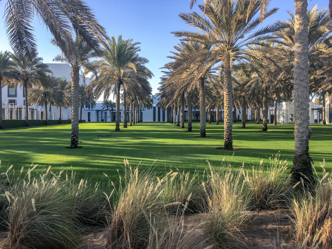 Palm trees in the grounds of the Chedi, a luxury hotel in Muscat