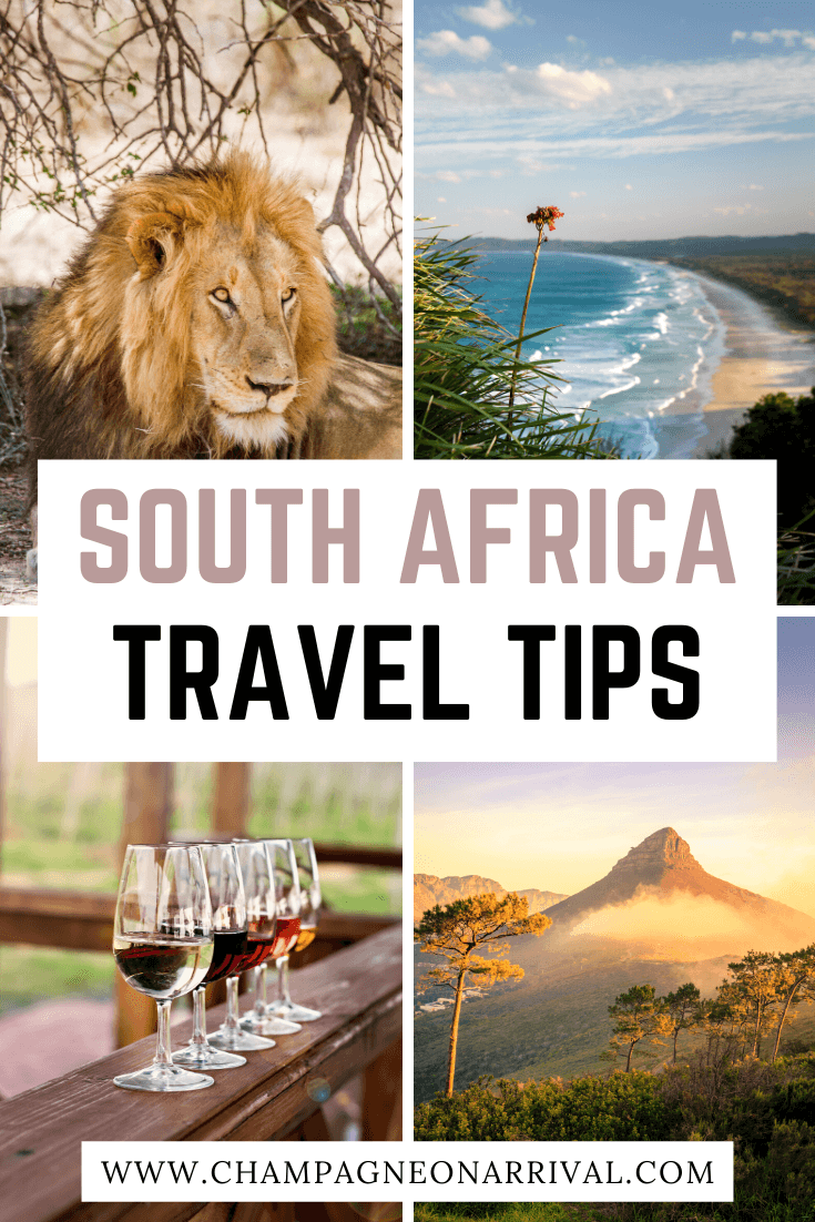 Pin for South Africa Travel Tips