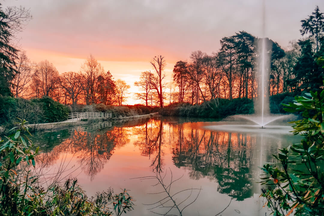 Sunrise in the grounds of Heckfield Place